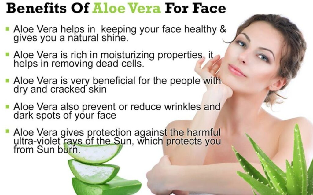 Aloe Vera Will Be Used In A Few Days To Get Into The Face